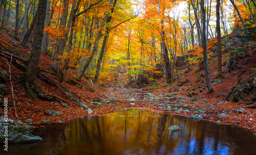 Foto op Plexiglas Herfst quiet small river in the autumn mountain canyon, autumn outdoor scene