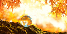 Glass Transparent Ball In Sunlight On Blurred Abstract Autumn Scene. Beautiful Autumn Forest Landscape With Glass Sphere And Maple Leaves. Fall Season. Shallow Depth, Soft Selective Focus.