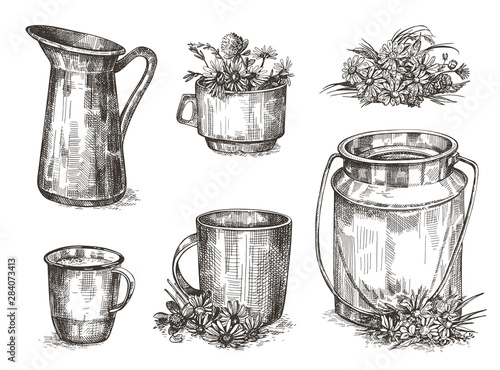 Fototapeta Crockery and wildflowers. Set of sketch images. Vintage illustrations. obraz