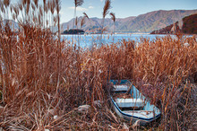 Old Broken Row Boat Stuck On Land Overgrown With Grass At Lake Shore