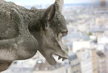 One Big Gargoyle Of Notre Dame The Paris