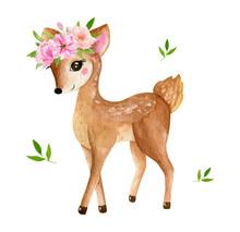 Cute Baby Deer Animal For Kind...