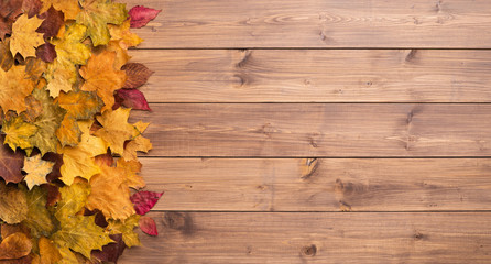 Seasonal autumn background. Frame of colorful maple leaves over grey.
