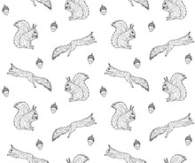 Vector Seamless Pattern Of Hand Drawn Sketch Squirrel Isolated On White Background