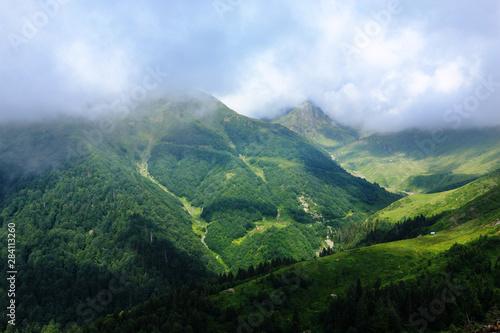 Fototapeta Fog in the mountains obraz na płótnie