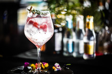 Tonic Gin With  Fresh Raspberry And Rosemarie Plant