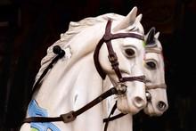 Portrait Of Two White Carousel Horses