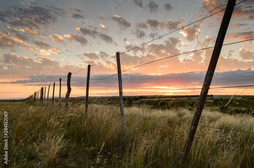 Photo Atardecer en el campo con alambrado