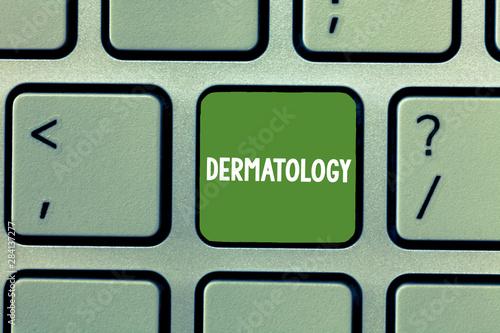 Vászonkép  Text sign showing Dermatology