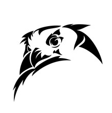 Wild Eagle Owl Bird Head Simpl...