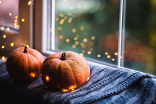Two Orange Pumpkins On Gray Knitted Plaid Near Window In Daylight Surrounded With Warm Garland Lights With Golden Bokeh.