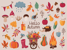 Big Set Of Autumn Leaves, Mushrooms, Berries For Harvest Festival Or Thanksgiving Day. Vector Illustration For Your Design