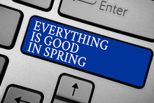 Word Writing Text Everything Is Good In Spring. Business Concept For Happiness For The Season Enjoy Nature Grey Silvery Keyboard With Bold Blue Color Button 3 White Color Texts