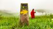 canvas print picture - Pilgerin auf dem Jakobsweg am Ibaneta Pass in den Pyrenäen