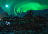Wild Nature in Lofoten Island with Northern Lights