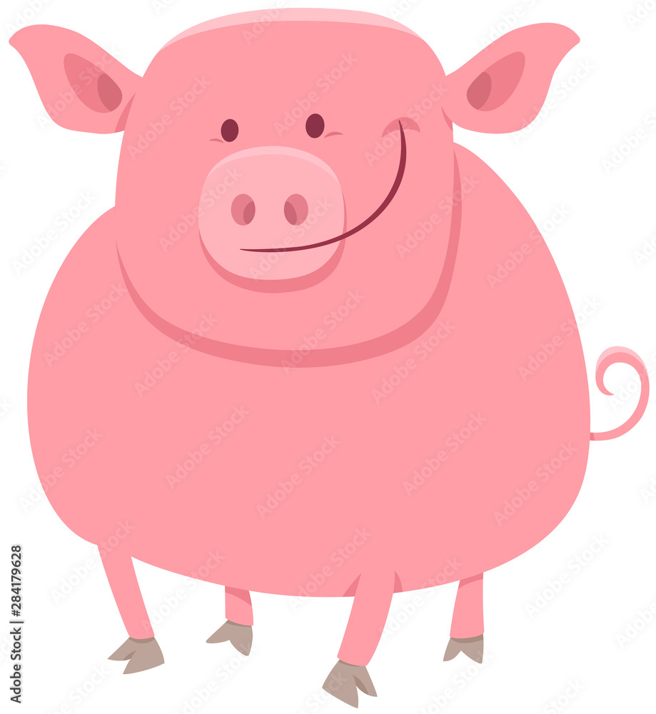 Fototapety, obrazy: pig animal character cartoon illustration