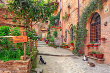 Beautiful Alley In Tuscany, Ol...