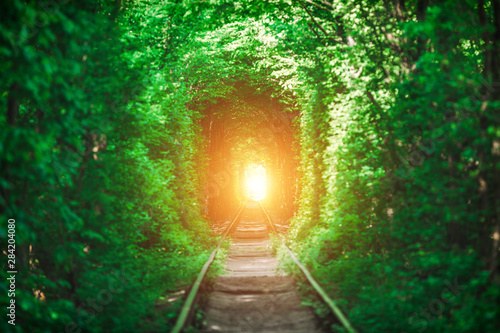 Obraz a railway in the spring forest tunnel of love - fototapety do salonu