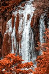 Fototapeta Wodospad Autumn gold Kravice waterfall on the Trebizat River in Bosnia and Herzegovina. Fall Miracle of Nature in Bosnia and Herzegovina. The Kravice waterfalls, originally known as the Kravica waterfalls