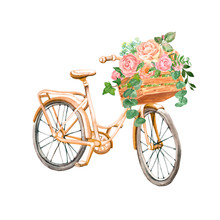 Summer Romantic Clipart With Apricot Pink Vintage Bicycle, Isolated On White Background. Beautiful Hand Painted Bike With Pretty Flowers In A Wooden Crate. Floral Bouquet With Roses And Eucalyptus.