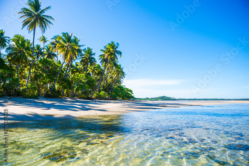 Bright scenic view of an empty, palm-fringed tropical beach in northeast Bahia, Brazil