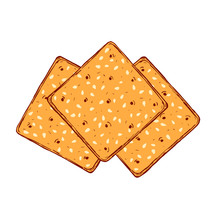 Hand Drawn Crackers With Sesame Seeds. Buscuit Sketch Vector Drawing.