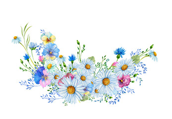 Chamomile flowers,wild flowers .Illustration in watercolor on an isolated white background