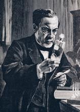 Louis Pasteur - Illustration From 1894