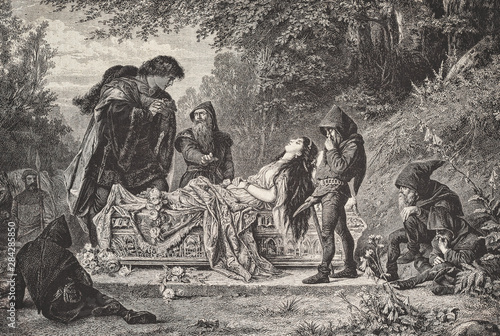 Cuadros en Lienzo Schneewitchen - Fairy Tale - Illustration from 1876
