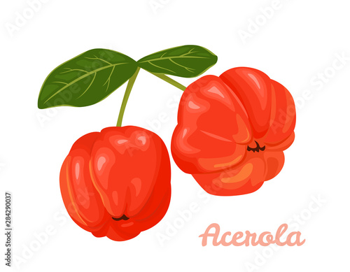 Red Acerola berries isolated on a white background Canvas Print