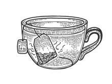 Cup Of Tea With Tea Bag Sketch...