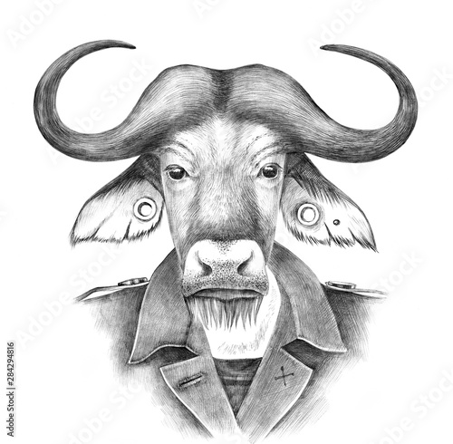 Hand drawn dressed up anthropomorphic buffalo