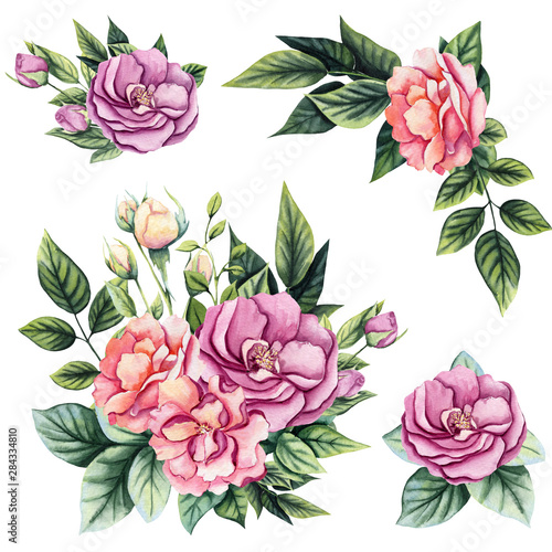Set of Watercolor Bouquets with Wild Roses, Buds and Leaves