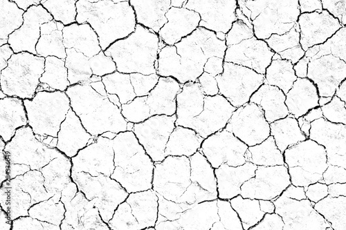 Cuadros en Lienzo  Dry cracked soil texture, background barren of drought lack of water of nature white