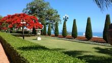 Indescribable Beauty Of The Bahai Gardens Of Haifa, Israel.
