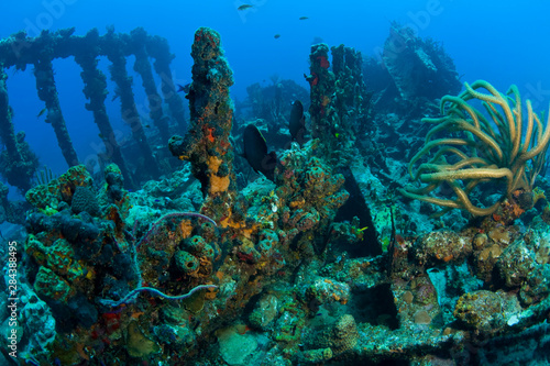 Obraz na plátně Wreck of the RMS Rhone, iron-hulled steam sailing vessel, sank after the Great H