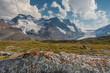 Mt. Athabasca, and Mt. Andromeda and Columbia Icefield as seen from Wilcox Trail, Jasper National Park