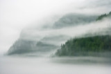 Canada, British Columbia, Fiordland Recreation Area. Mist and fog shroud water and forested island.  - 284391818