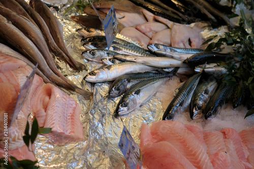 Photo  France, Paris. Seafood, Thursday Market, Boulevard Saint-Germain
