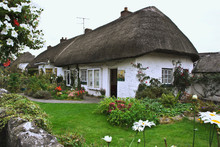 Ireland, Adare. Thatched-roof Cottage Surrounded By Garden.