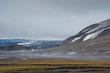 Norway. Svalbard. Barentsoya. Freemansundet. Steam rising from the ground where daytime sun hits the damp ground.