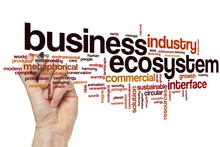 Business Ecosystem Word Cloud