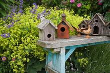 Bird Houses On Bench In Garden.