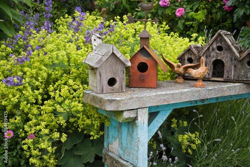 Slika na platnu Bird houses on bench in garden.