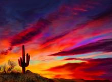 Arizona Sunset, A Saguaro Cactus Highlighted By The Setting Sun Landscape.