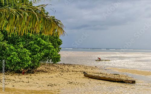 Photo Kosrae, Micronesia