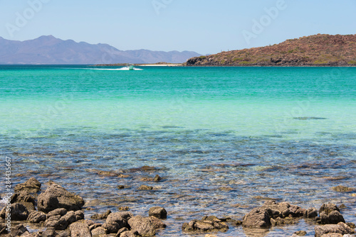 Mexico, Baja California Sur, Sea of Cortez Canvas Print