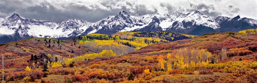Fototapety, obrazy: USA, Colorado, San Juan Mountains. Autumn turns aspen leaves orange and gold at Dallas Divide in the San Juan Mountains in Colorado