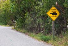 USA, Florida, Sanibel, Gopher Tortoise Crossing