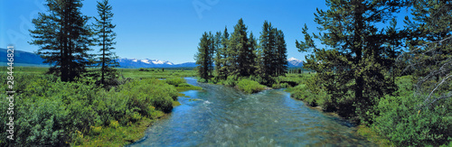 Foto auf Gartenposter Fluss USA, Idaho, Sawtooth NRA. Visitors enjoy a summer view of the rushing headwaters of the Salmon River, Sawtooth NRA, Idaho.
